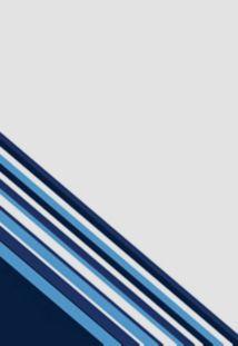Boombah Custom Luggage Background Graphic