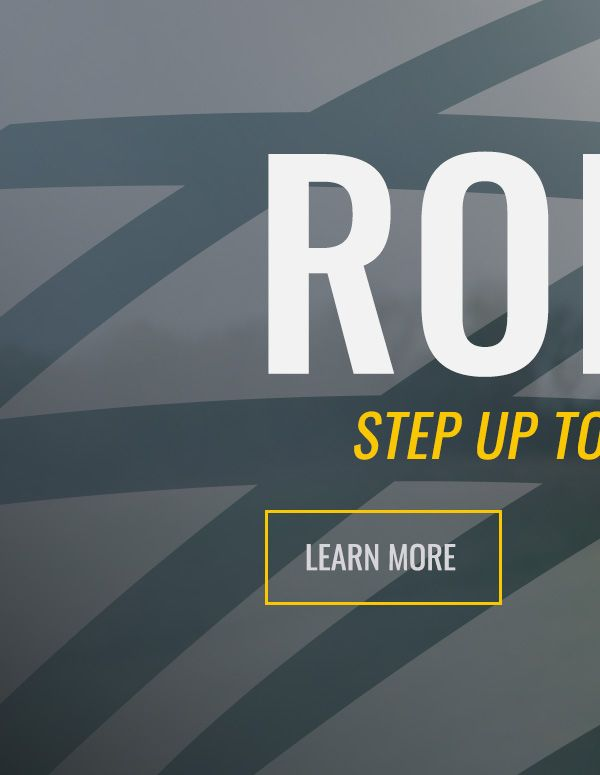 Ronin - Learn More